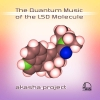 "CDr ""The Quantum Music Of The LSD Molecule"""