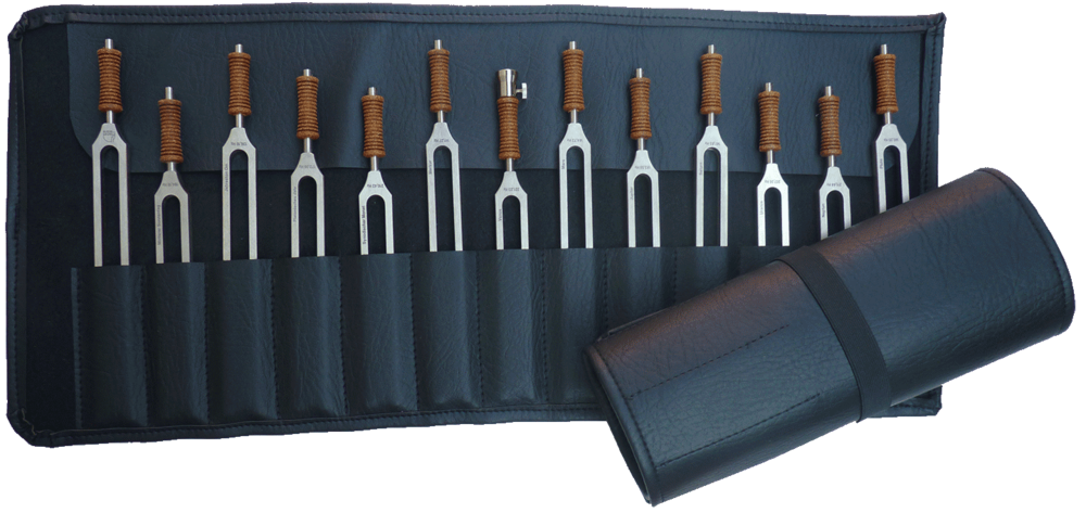 Set with 25 Tuning Forks Lplus